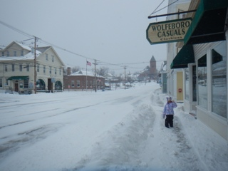blog-Jan-26-2015-3-a-blizzard-in-wolfeboro-nh