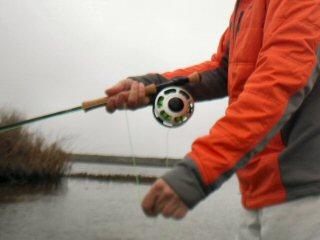 blog-Feb-19-2015-4-ross-reels-sa-flylines-winston-rods
