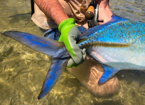 fly-fishing-sudan-3