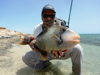 blog-April-7-2015-7-flyfishing-for-yellowmargin-triggerfish