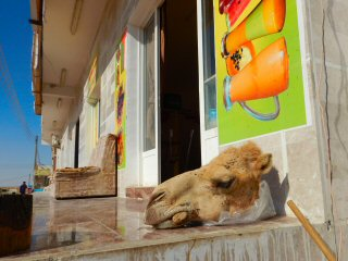 blog-April-20-2015-11-camel-head-stew