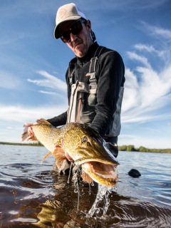 blog-June-23-2015-10-jeff-currier-fly-fishing-for-pike