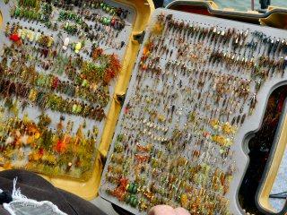 blog-July-17-2015-4-phil-rowley-flies