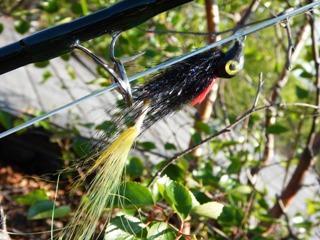 blog-June-24-2015-4-warpath-flies