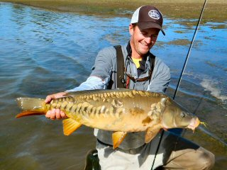 the dog days are for fly fishing for carp - jeff currier, Fly Fishing Bait