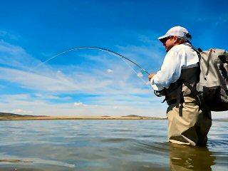 blog-Aug-28-2015-8-tim-brune-flyfishing-carp