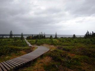 blog-Aug-3-2015-16-McKenzie-River-Lodge-Labrador