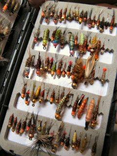 blog-Aug-4-2015-4-vladi-trzebunia-flies