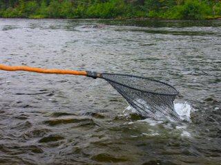 blog-Aug-5-2015-13-flyfishing-in-labrador