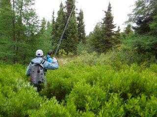 blog-Aug-5-2015-2-hiking-labrador