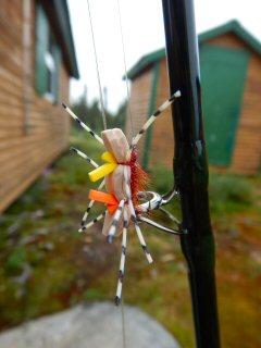 blog-Aug-5-2015-3-chernobyl-ant