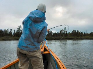 blog-Aug-6-2015-4-pike-fishing-in-labrador