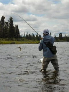 blog-Aug-7-2015-5-flyfishing-for-ouananiche