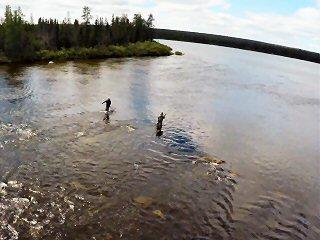 blog-Aug-8-2015-11- Mckenzie-river-labrador