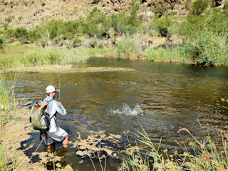 blog-Nov-15-2015-7-jeff-currier-flyfishing-south-africa