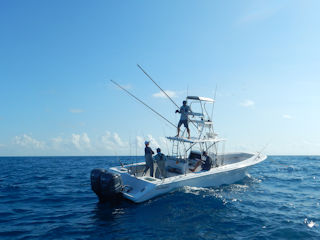 blog-Nov-1b-2015-4-fishing-wrecks