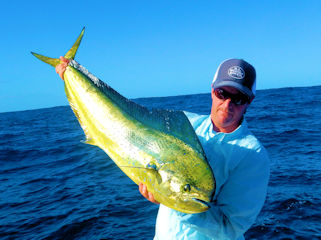 blog-Dec-13-2015-8-jeff-currier-dorado-fishing
