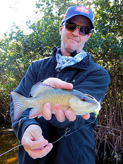 blog-Feb-5-2016-7-jeff-currier-flyfishing-mangrove-snapper