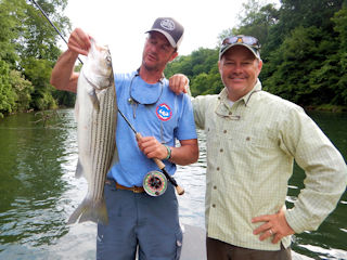 blog-May-10-2016-6-jeff-currier-striped-bass-fishing-ga