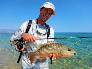 blog-May-16-2016-4-jeff-currier-mullet-snapper