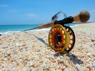 blog-May-17-2016-1-bauer-reels-jeff-currier