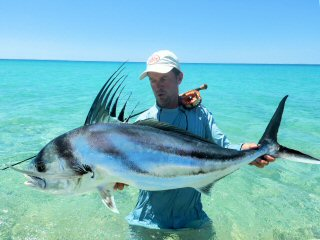 blog-May-20-2016-8-jeff-currier-huge-roosterfish