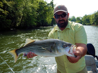 blog-May-9-2016-8-garner-reid-fishing-guide