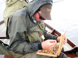 blog-June-10-2016-5-fishing-guide-mike-drinan