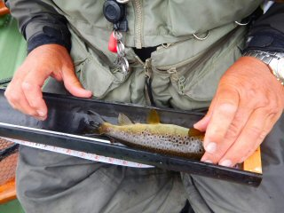 blog-June-17-2016-13-world-championshhips-of-flyfishing