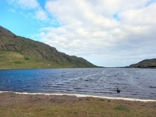 blog-June-17-2016-3-flyfishing-lough-muck