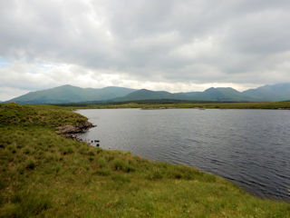 blog-June-9-2016-4-fly-fishing-ireland