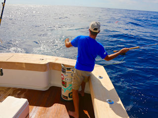 blog-sept-18-2016-6-jeff-currier-flyfishing-marlin