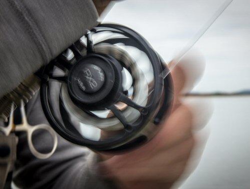 streamer-fishing-4