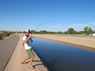 urban arizona asualt of grass carp jeff currier